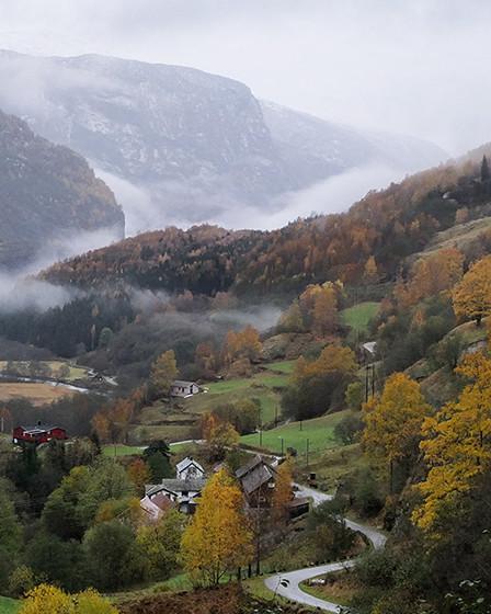 vue du train de flam en norvege