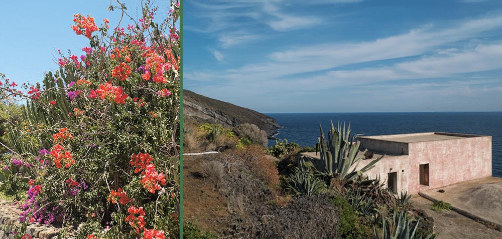 Nica à Pantelleria