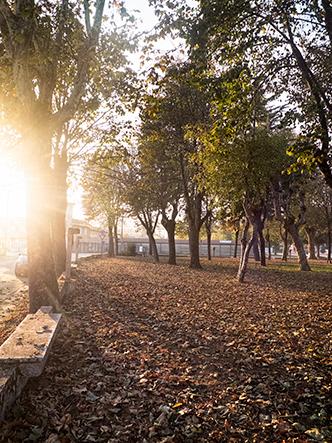 Parc du sanctuaire de la Madone de Bozzola