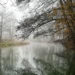 La Lomellina en hiver: brume, promenades et autres curiosités