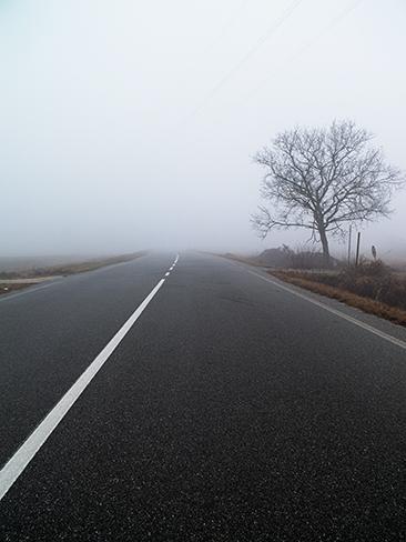 Route dans la brume Lombardie