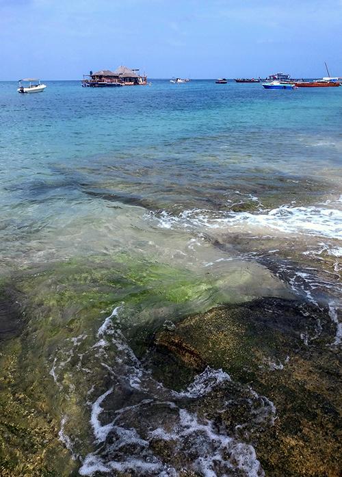 le bord de mer à zanzibar