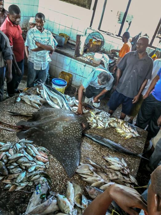 la pêche locale sur le marché de Stone town à zanzibar