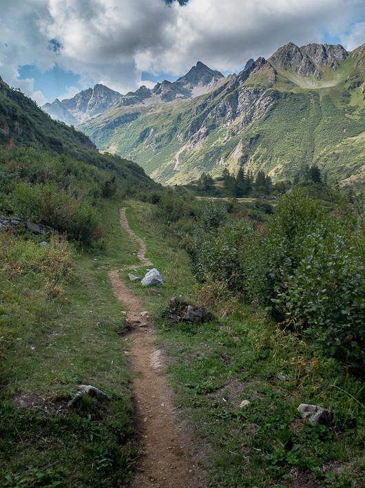 Sentiers et Fleurs Alpines