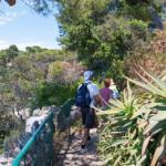 Antibes Juan-les-Pins, Côte d'Azur, France : la nature en majesté