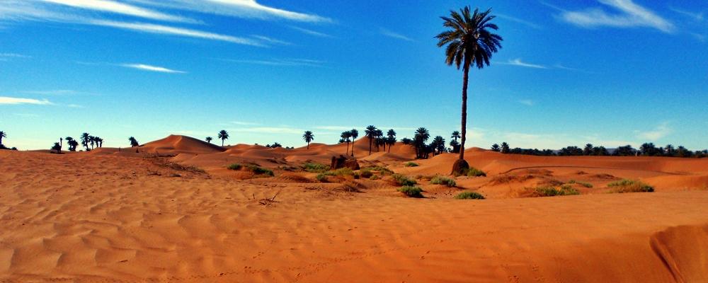 Le Désert du Maroc